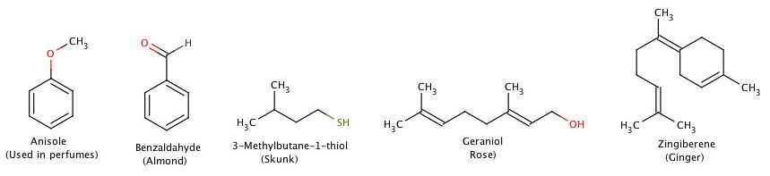 Examples of odor molecules.