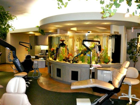 Fish tank in a dental office can improve your overall experience with the dentist.