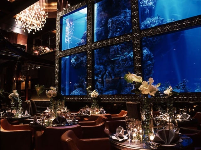 Luxis – an aqua bar and restaurant in Japan.