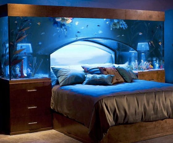 Feng shui advises against a fish tank in the bedroom or kitchen.
