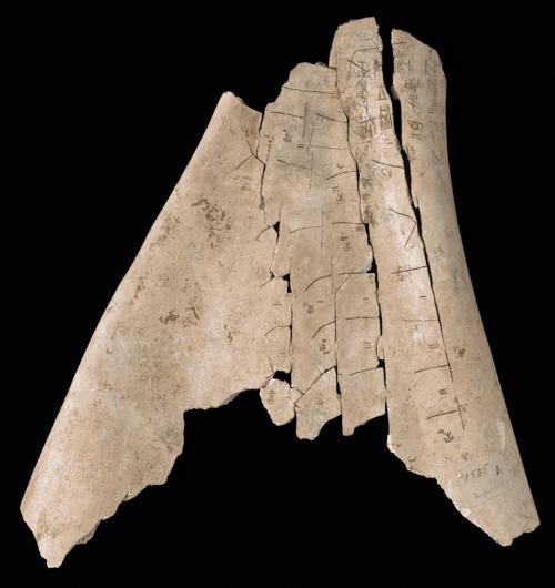 Shang Dynasty Oracle Bone, c. 1600 to 1050 BC. Image credit: British Library Board.
