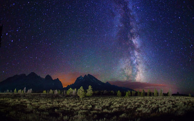 night-sky-stars-trees-plain-field (Demo)