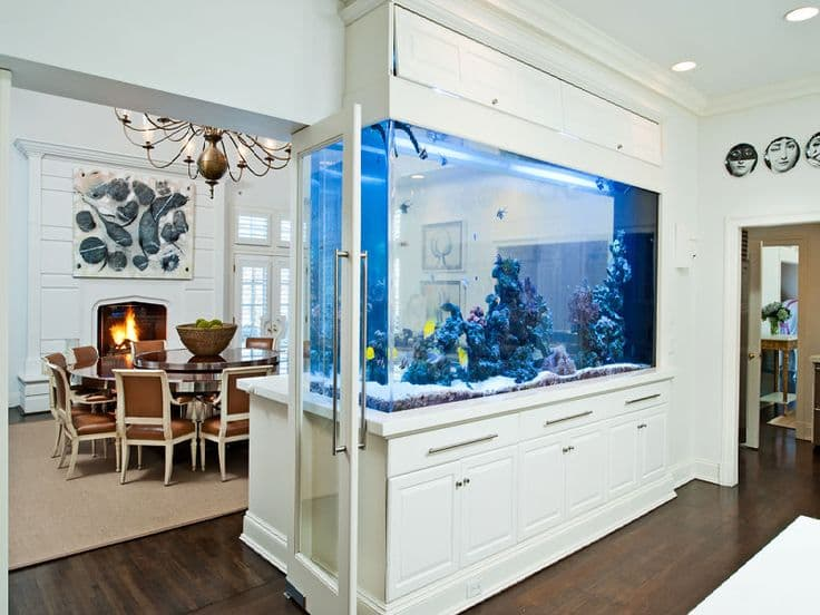 Feng Shui Aquarium Location In Your House And Office Feng Shui Nexus
