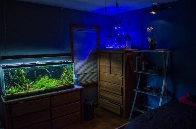 aquarium in bedroom feng shui-min